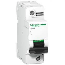Schneider Electric - C120N DEVRE KESİCİ 1P 100A C EĞRİSİ 3606480379321